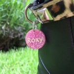 Personalised Glitter Dog or Cat Tag