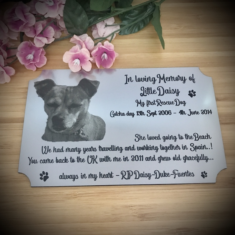 Metallic Stainless Steel Silver Coloured Plaque Personalised 15cm x 10cm Memorial Plaque for your Pet